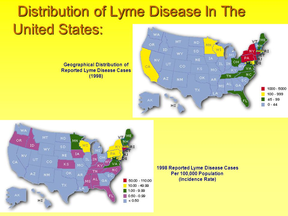 Distribution of Lyme Disease In The United States: Distribution of Lyme Disease In The United States: 1998 Reported Lyme Disease Cases Per 100,000 Pop