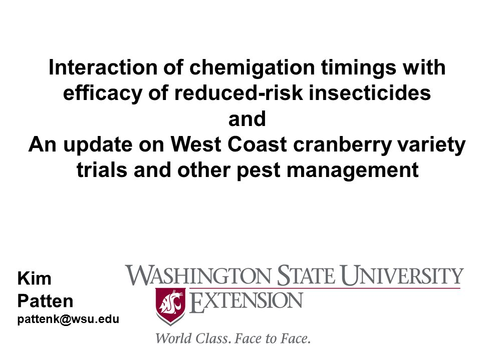 Interaction of Chemigation Timings with Efficacy of Reduced-Risk Insecticides How does variation in chemigation timing effect efficacy.