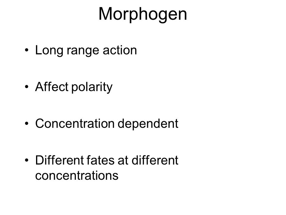 Morphogen Long range action Affect polarity Concentration dependent Different fates at different concentrations