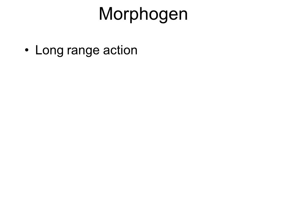 Morphogen Long range action