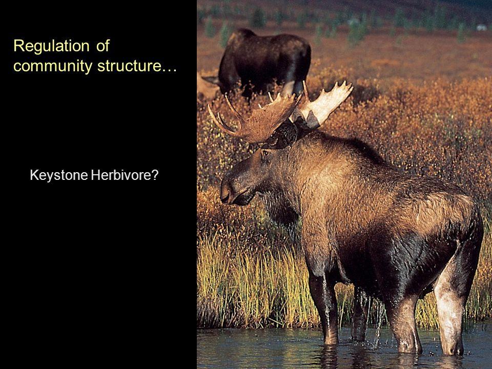 Keystone Herbivore Regulation of community structure…
