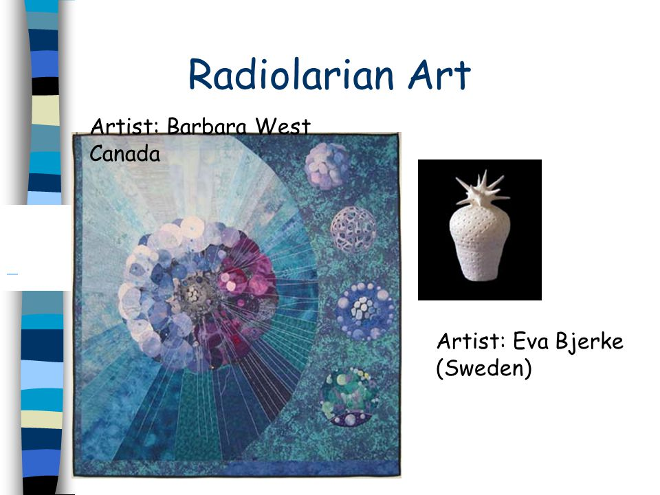 Radiolarians Studied by micro paleontologists