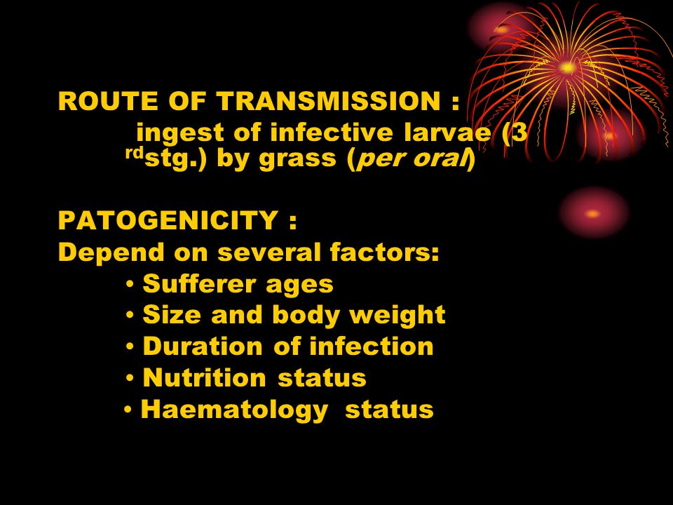 ROUTE OF TRANSMISSION : ingest of infective larvae (3 rd stg.) by grass (per oral) PATOGENICITY : Depend on several factors: ∙ Sufferer ages ∙ Size and body weight ∙ Duration of infection ∙ Nutrition status ∙ Haematology status