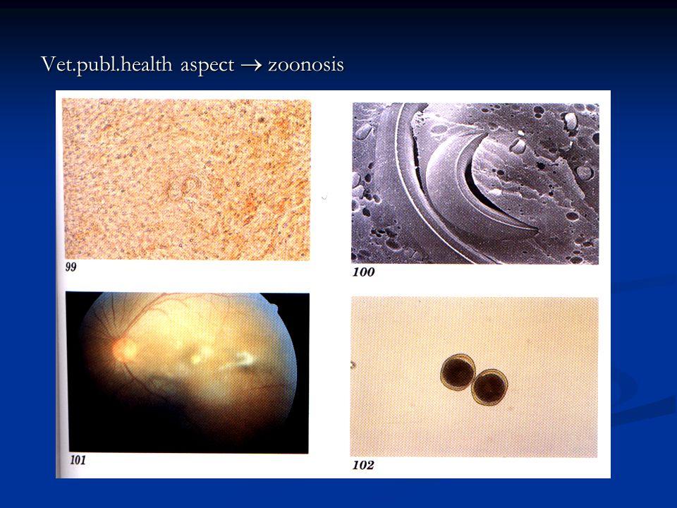 Vet.publ.health aspect  zoonosis