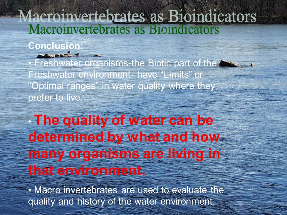 Conclusion: Freshwater organisms-the Biotic part of the Freshwater environment- have Limits or Optimal ranges in water quality where they prefer to live.