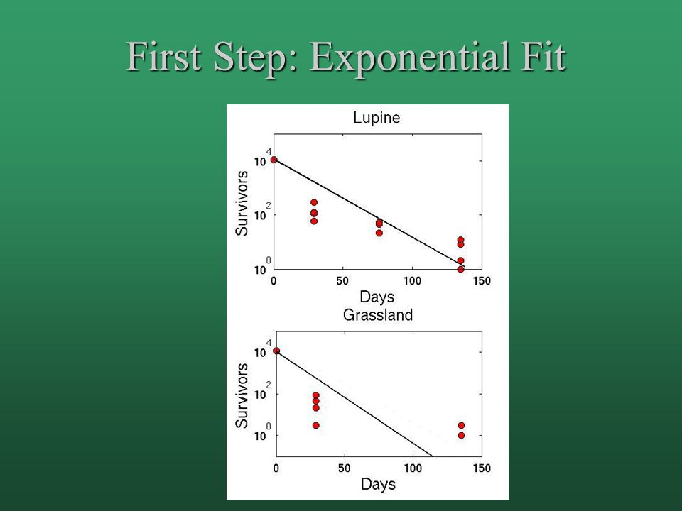 First Step: Exponential Fit
