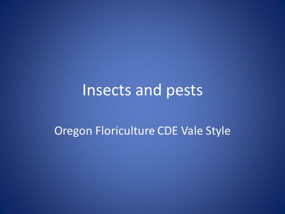 Insects and pests Oregon Floriculture CDE Vale Style
