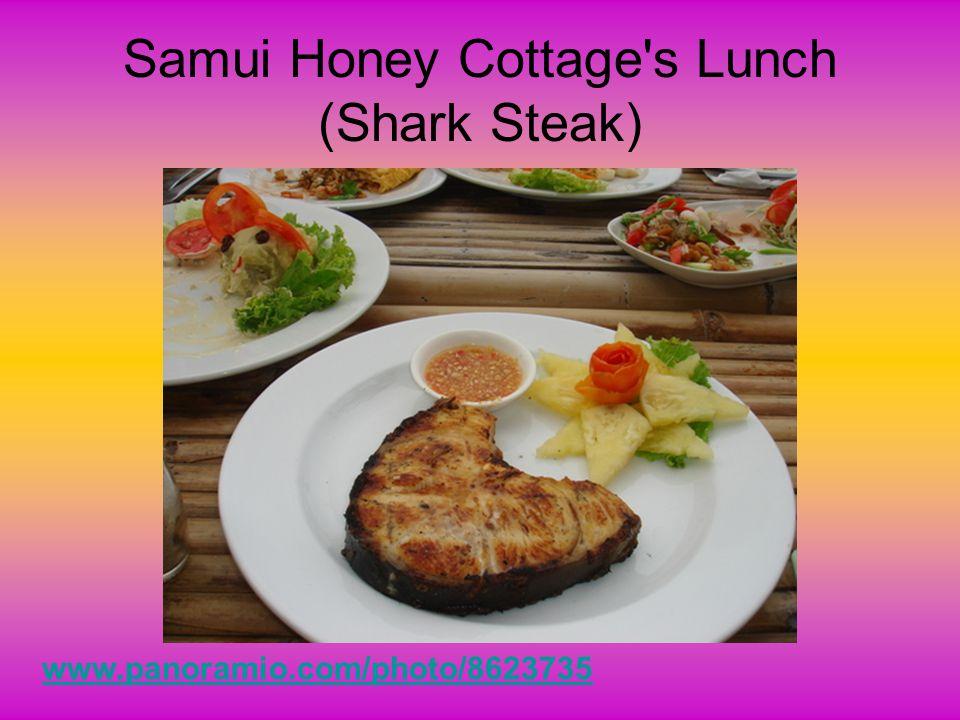 Shark steaks- (from Vietnam) http://img.alibaba.com/photo/100757660/Moro_Shark_Steak_Skin_On_Bone_In.jpg