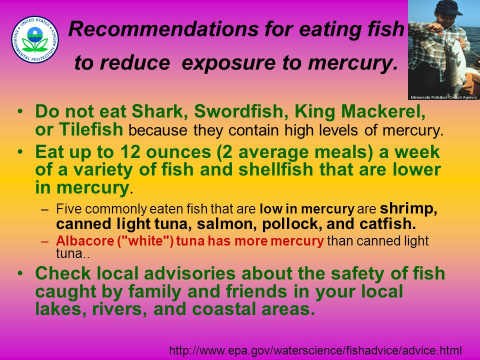 Eating Fish Is eating fish healthy? Fish and shellfish are an important part of a healthy diet. Contain protein & omega-3 fatty acids, are low in satu