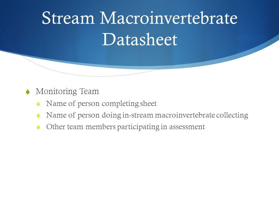 Stream Macroinvertebrate Datasheet  Monitoring Team  Name of person completing sheet  Name of person doing in-stream macroinvertebrate collecting  Other team members participating in assessment