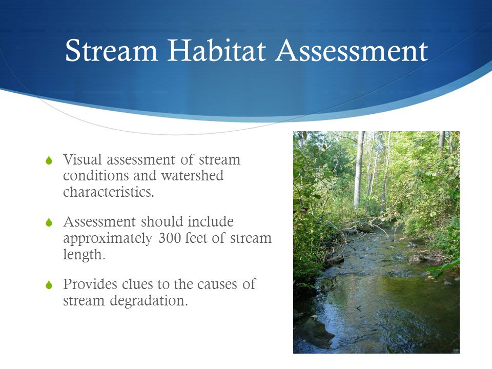 Stream Habitat Assessment  Visual assessment of stream conditions and watershed characteristics.