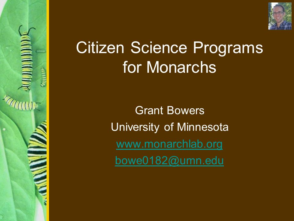 Citizen Science Programs for Monarchs Grant Bowers University of Minnesota www.monarchlab.org bowe0182@umn.edu