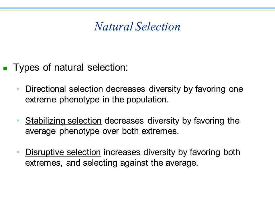 Natural Selection n Types of natural selection: Directional selection decreases diversity by favoring one extreme phenotype in the population.