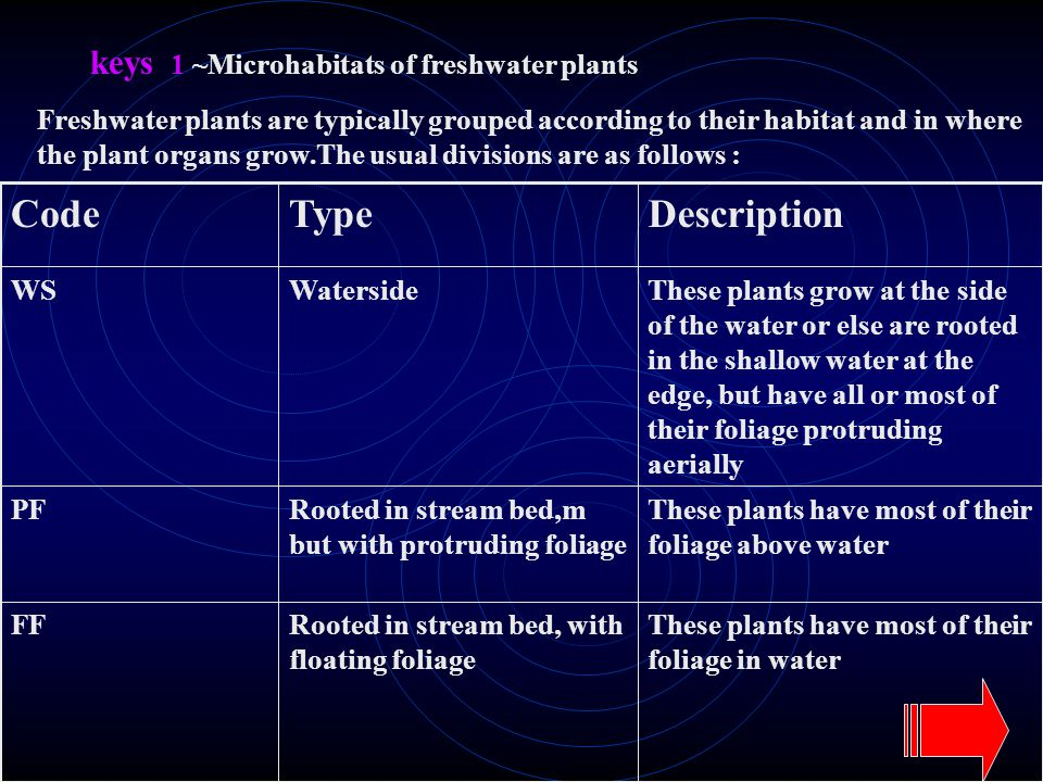 keys 1 ~Microhabitats of freshwater plants Freshwater plants are typically grouped according to their habitat and in where the plant organs grow.The usual divisions are as follows : These plants have most of their foliage in water Rooted in stream bed, with floating foliage FF These plants have most of their foliage above water Rooted in stream bed,m but with protruding foliage PF These plants grow at the side of the water or else are rooted in the shallow water at the edge, but have all or most of their foliage protruding aerially WatersideWS DescriptionTypeCode