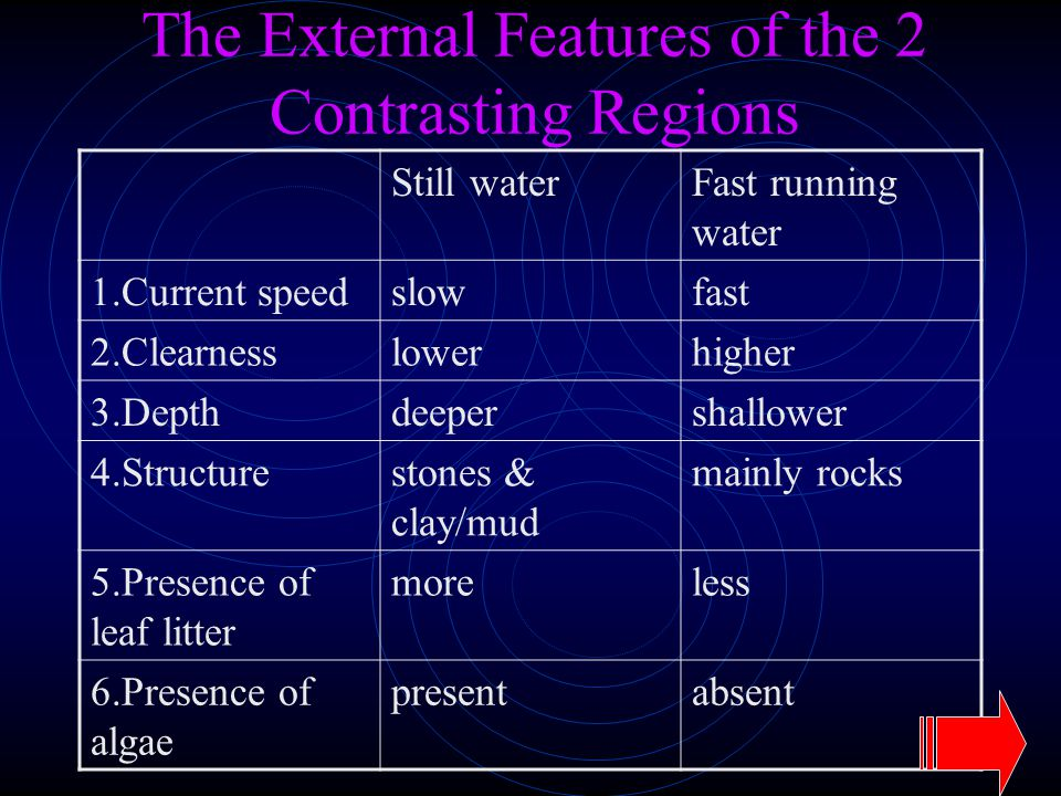 The External Features of the 2 Contrasting Regions Still waterFast running water 1.Current speedslowfast 2.Clearnesslowerhigher 3.Depthdeepershallower