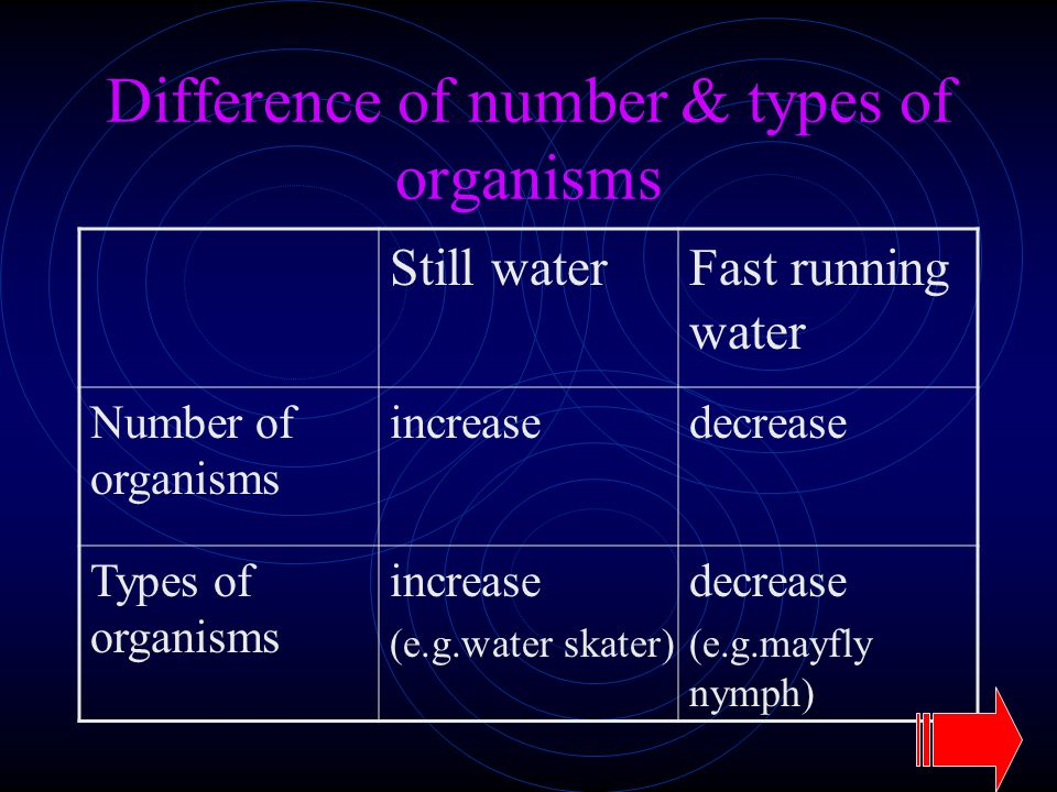 Difference of number & types of organisms Still waterFast running water Number of organisms increasedecrease Types of organisms increase (e.g.water sk