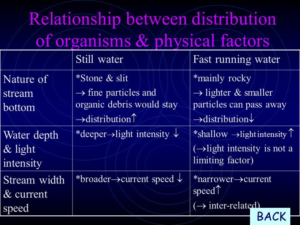 Relationship between distribution of organisms & physical factors Still waterFast running water Nature of stream bottom *Stone & slit  fine particles