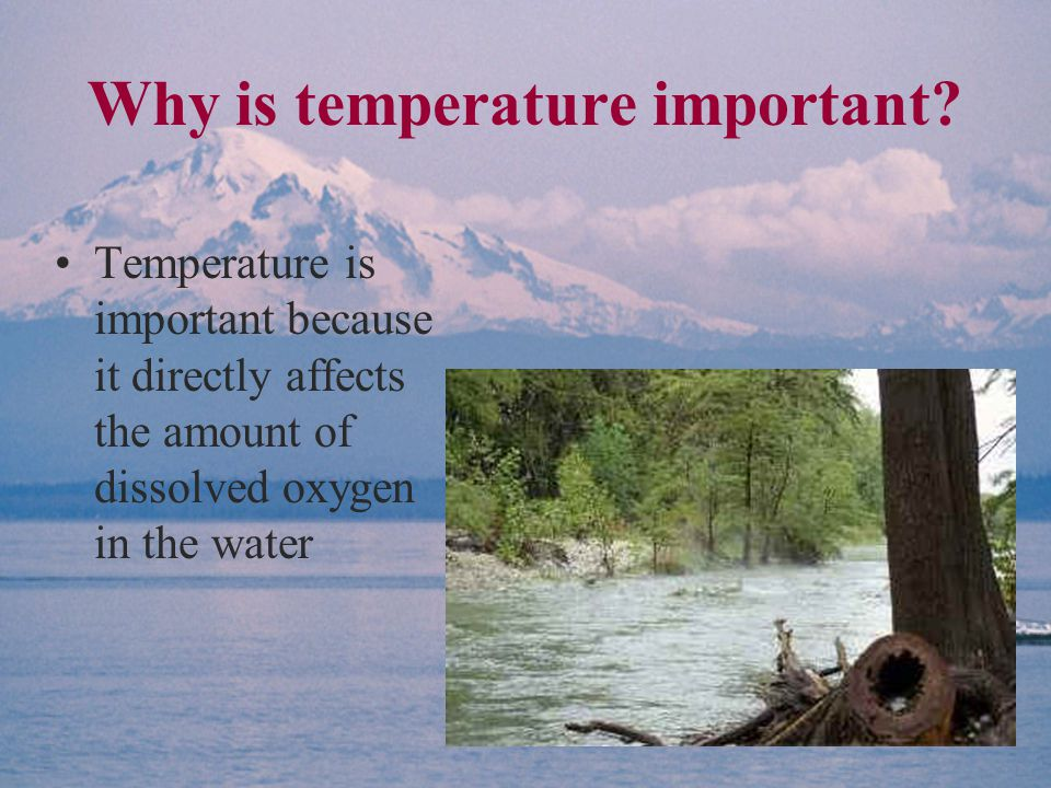 Why is temperature important.