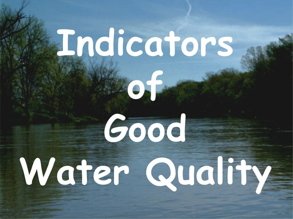 pH Neutral water has a pH of 7 Water with a pH less than 7 is acidic Water with a pH greater than 7 is basic pH is affected by rain, geology and unnatural disturbances