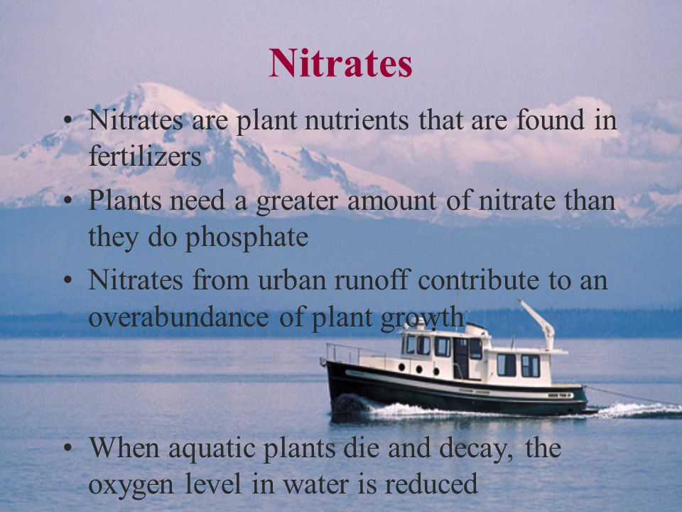 Nitrates Nitrates are plant nutrients that are found in fertilizers Plants need a greater amount of nitrate than they do phosphate Nitrates from urban runoff contribute to an overabundance of plant growth When aquatic plants die and decay, the oxygen level in water is reduced