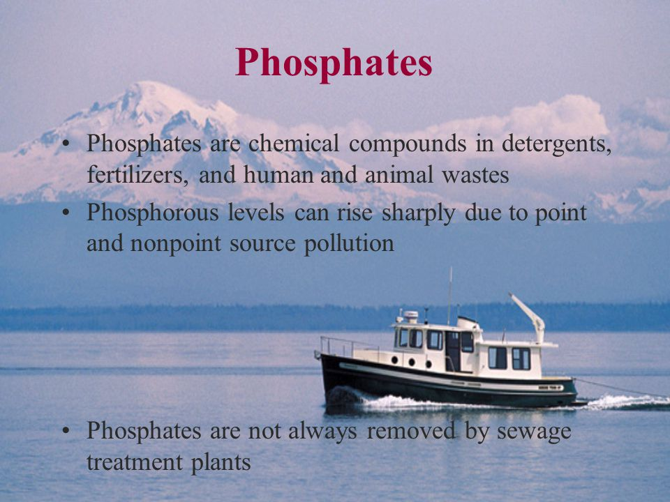 Phosphates Phosphates are chemical compounds in detergents, fertilizers, and human and animal wastes Phosphorous levels can rise sharply due to point and nonpoint source pollution Phosphates are not always removed by sewage treatment plants