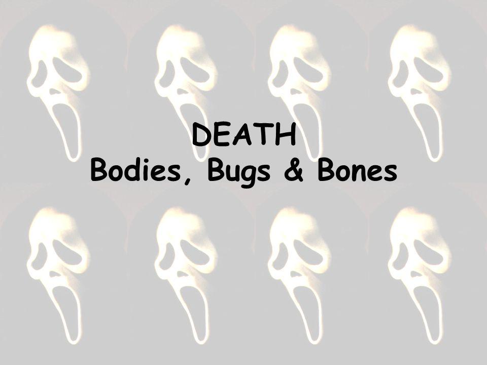DEATH Bodies, Bugs & Bones