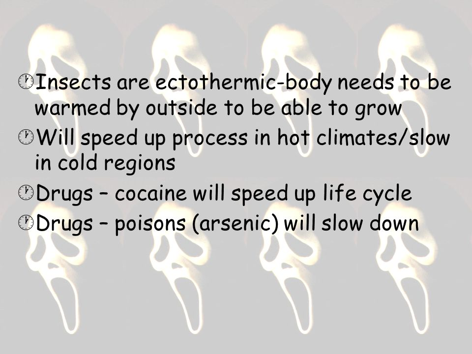  Insects are ectothermic-body needs to be warmed by outside to be able to grow  Will speed up process in hot climates/slow in cold regions  Drugs – cocaine will speed up life cycle  Drugs – poisons (arsenic) will slow down