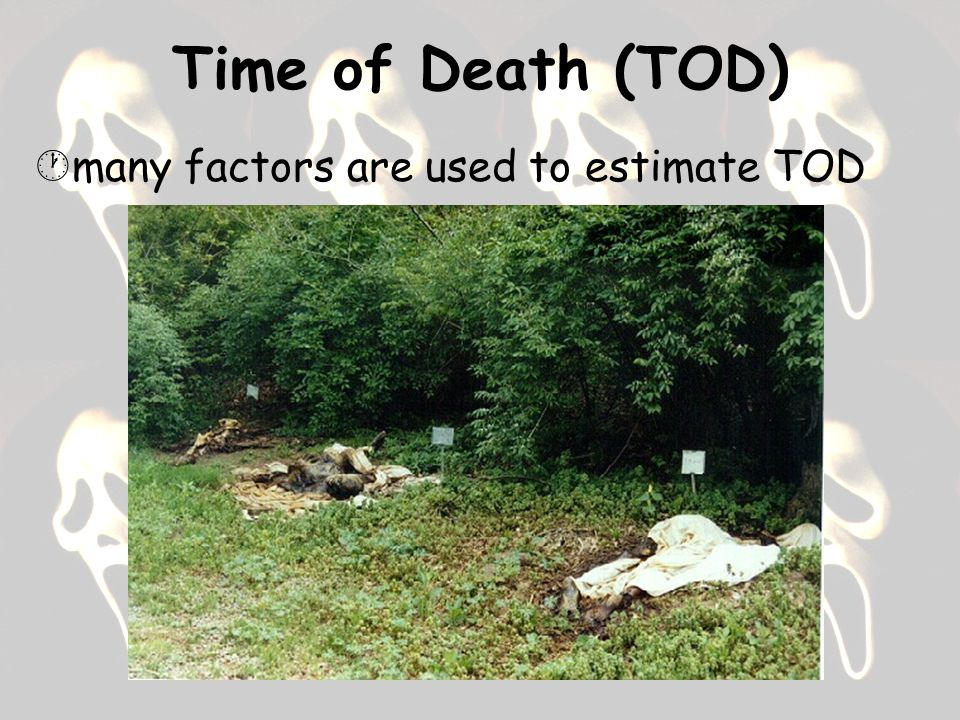 Time of Death (TOD)  many factors are used to estimate TOD