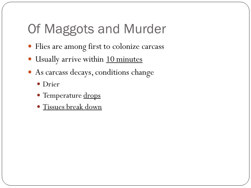 Of Maggots and Murder Flies are among first to colonize carcass Usually arrive within 10 minutes As carcass decays, conditions change Drier Temperatur