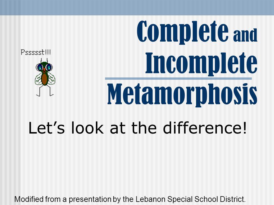 What is metamorphosis.