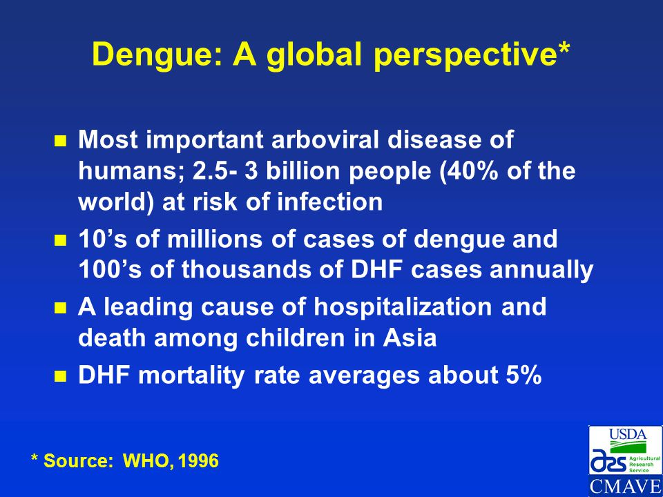 World distribution of dengue 2006 Areas infested with Aedes aegypti Areas with Ae.