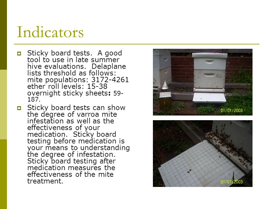 Indicators  Sticky board tests. A good tool to use in late summer hive evaluations. Delaplane lists threshold as follows: mite populations: 3172-4261