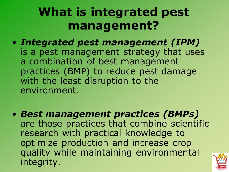 What is integrated pest management.