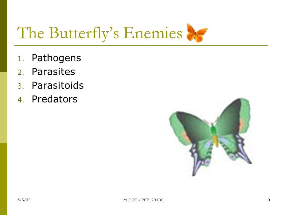 6/5/03M-DCC / PCB 2340C9 The Butterfly's Enemies 1. Pathogens 2. Parasites 3. Parasitoids 4. Predators