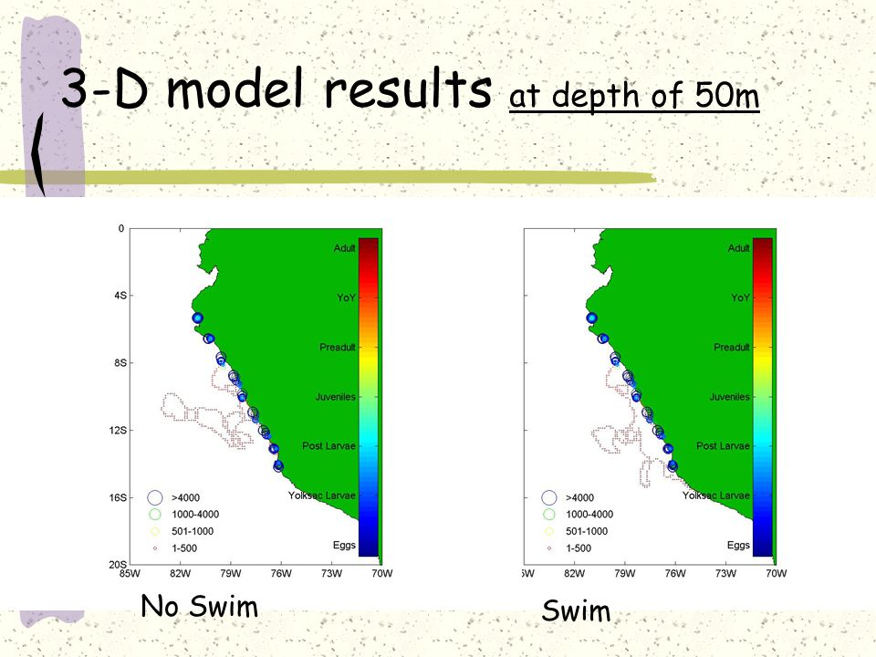3-D model results at depth of 50m Swim No Swim