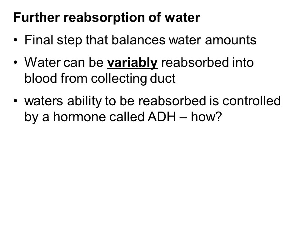 Further reabsorption of water Final step that balances water amounts Water can be variably reabsorbed into blood from collecting duct waters ability t