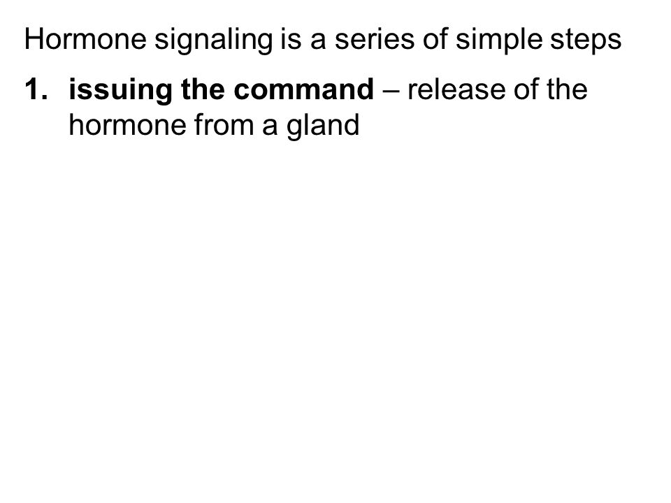 Hormone signaling is a series of simple steps 1.issuing the command – release of the hormone from a gland