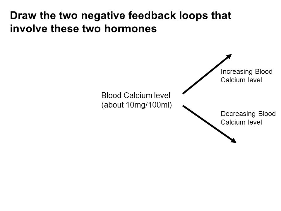 Blood Calcium level (about 10mg/100ml) Increasing Blood Calcium level Decreasing Blood Calcium level Draw the two negative feedback loops that involve