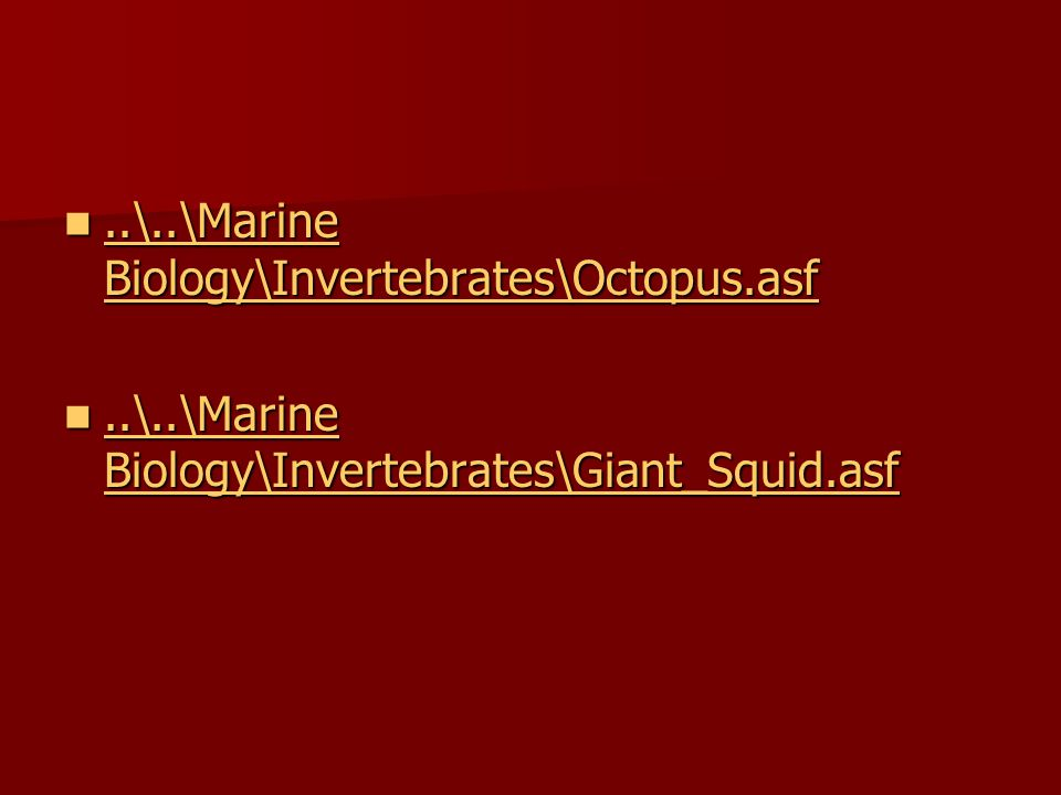 ..\..\Marine Biology\Invertebrates\Octopus.asf..\..\Marine Biology\Invertebrates\Octopus.asf..\..\Marine Biology\Invertebrates\Octopus.asf..\..\Marine Biology\Invertebrates\Octopus.asf..\..\Marine Biology\Invertebrates\Giant_Squid.asf..\..\Marine Biology\Invertebrates\Giant_Squid.asf..\..\Marine Biology\Invertebrates\Giant_Squid.asf..\..\Marine Biology\Invertebrates\Giant_Squid.asf