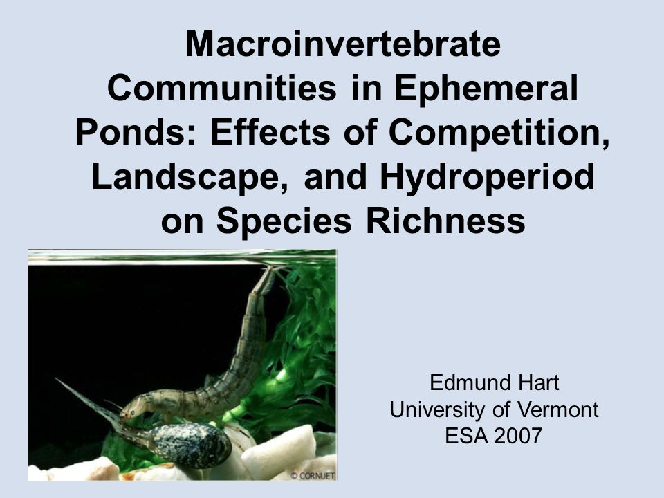 Macroinvertebrate Communities in Ephemeral Ponds: Effects of Competition, Landscape, and Hydroperiod on Species Richness Edmund Hart University of Vermont ESA 2007