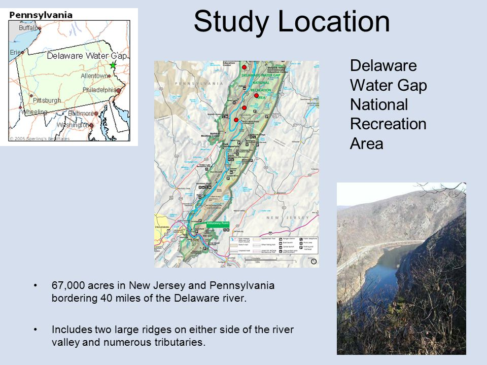 Study Location Delaware Water Gap National Recreation Area 67,000 acres in New Jersey and Pennsylvania bordering 40 miles of the Delaware river.