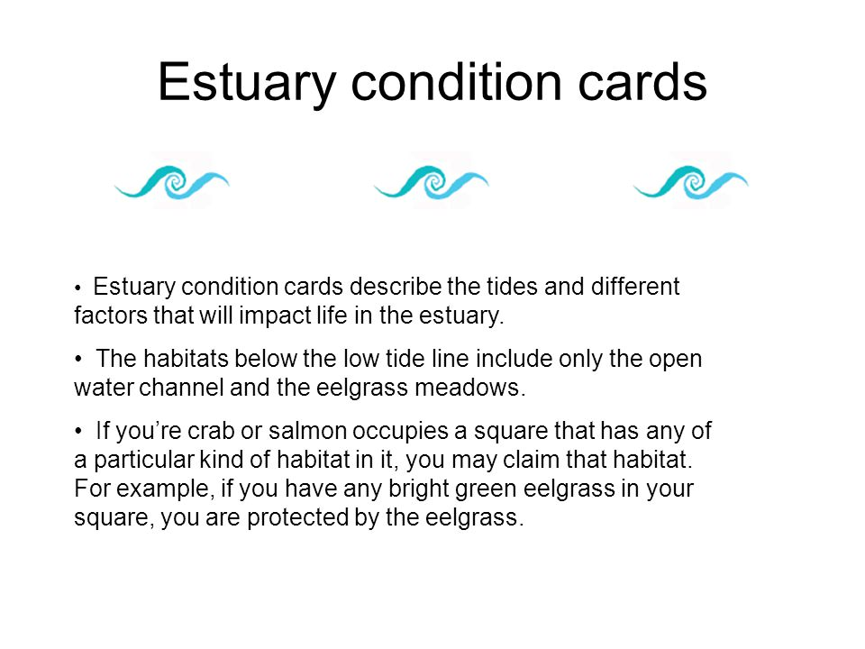 Estuary condition cards Estuary condition cards describe the tides and different factors that will impact life in the estuary. The habitats below the