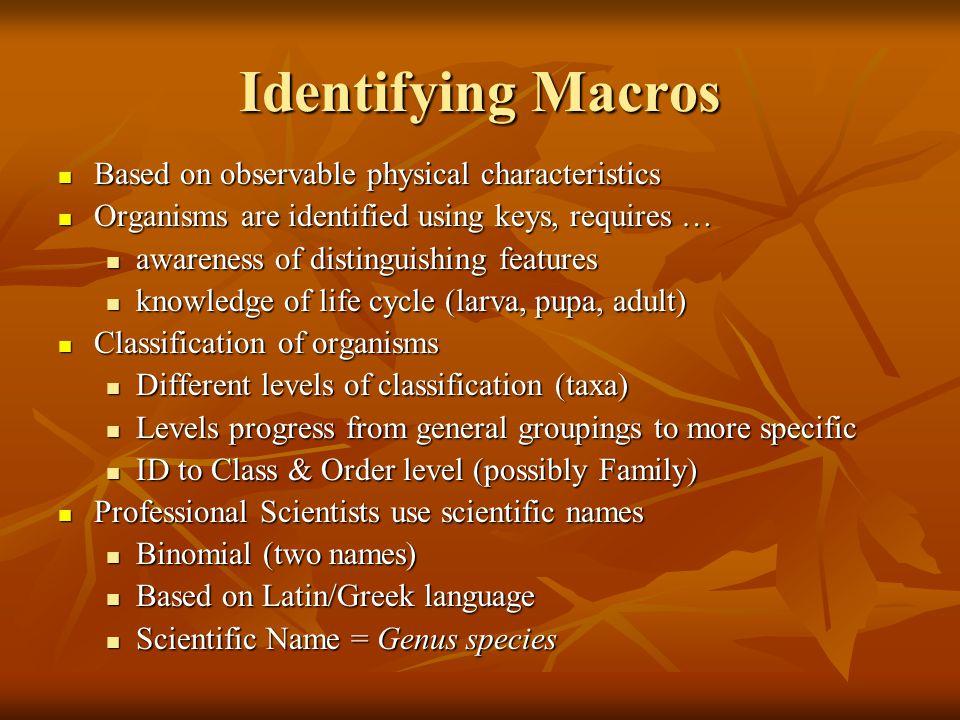 Identifying Macros Based on observable physical characteristics Based on observable physical characteristics Organisms are identified using keys, requ