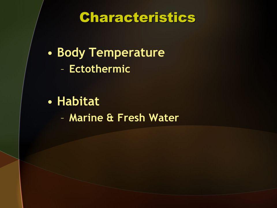 Body Temperature –Ectothermic Habitat –Marine & Fresh Water Characteristics