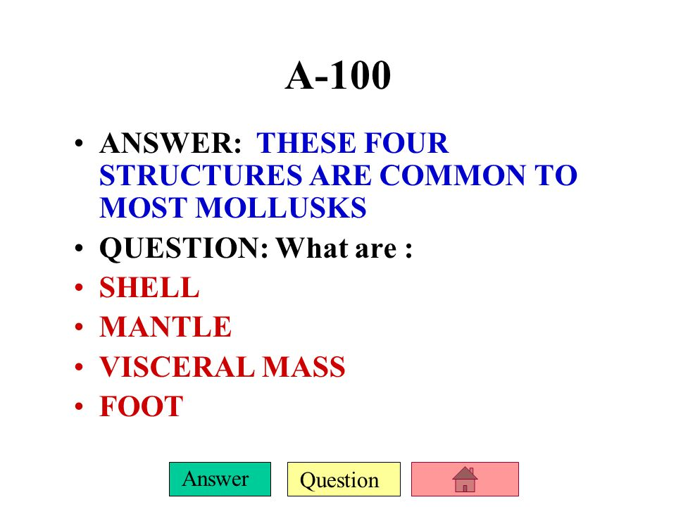 Question Answer A-100 ANSWER: THESE FOUR STRUCTURES ARE COMMON TO MOST MOLLUSKS QUESTION: What are : SHELL MANTLE VISCERAL MASS FOOT