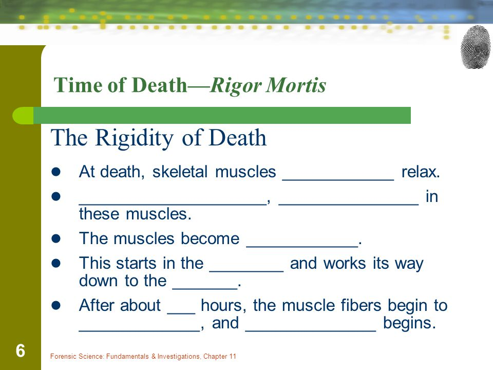 Forensic Science: Fundamentals & Investigations, Chapter 11 6 Time of Death—Rigor Mortis The Rigidity of Death At death, skeletal muscles ____________ relax.