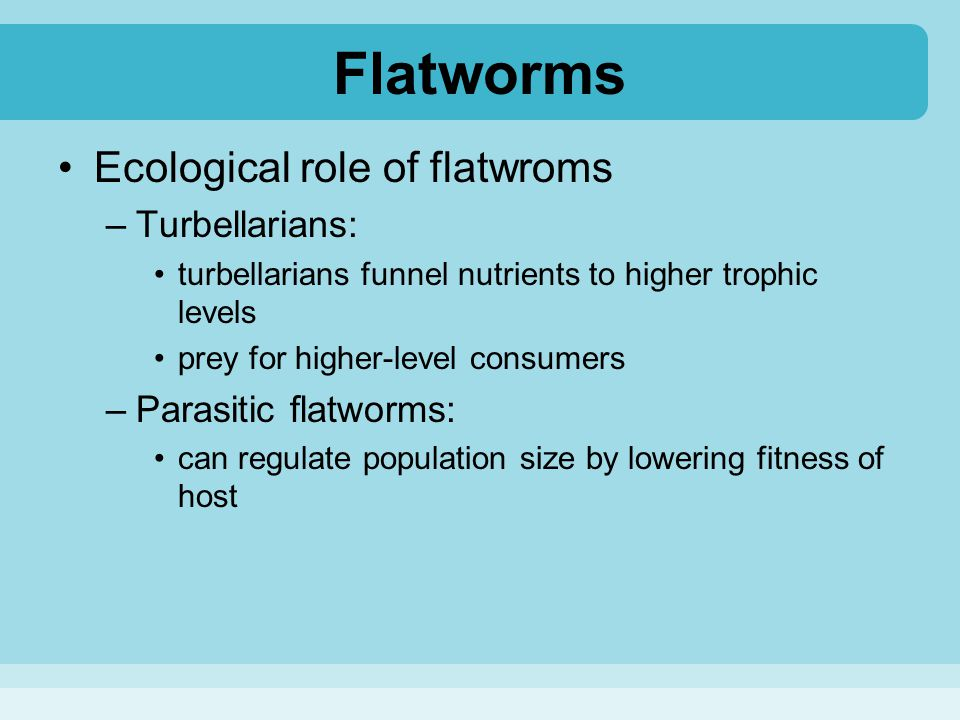 Flatworms Ecological role of flatwroms –Turbellarians: turbellarians funnel nutrients to higher trophic levels prey for higher-level consumers –Parasi