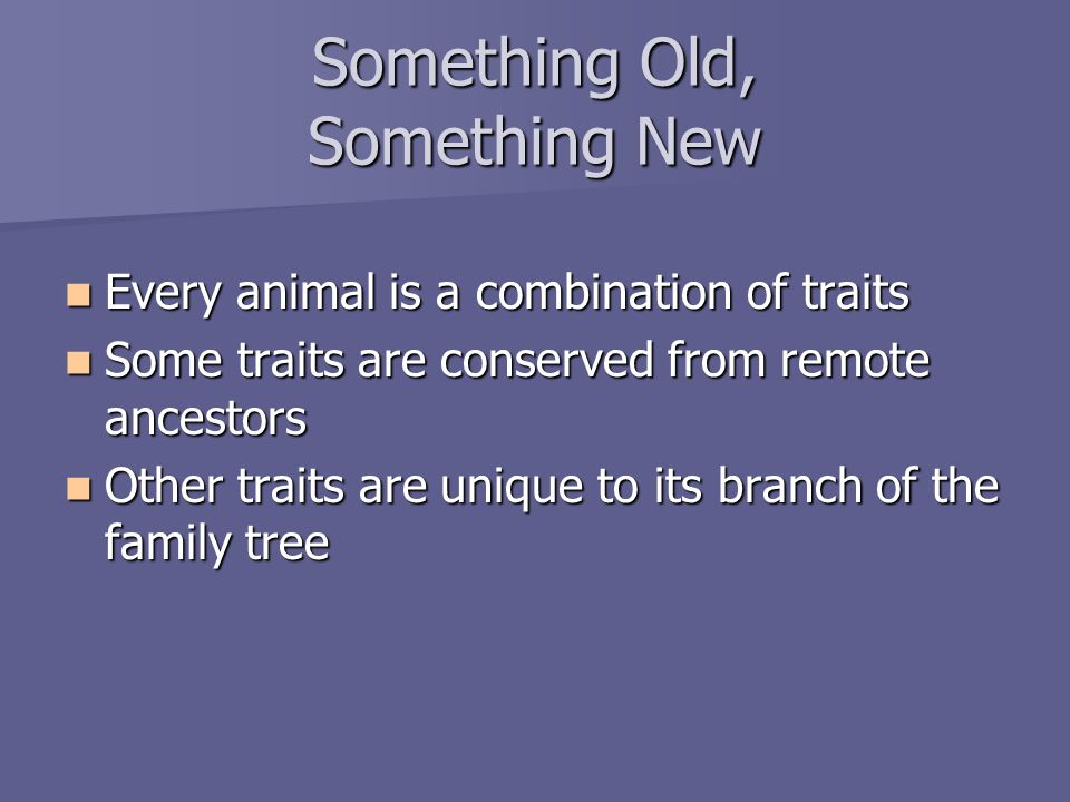Something Old, Something New Every animal is a combination of traits Every animal is a combination of traits Some traits are conserved from remote ancestors Some traits are conserved from remote ancestors Other traits are unique to its branch of the family tree Other traits are unique to its branch of the family tree