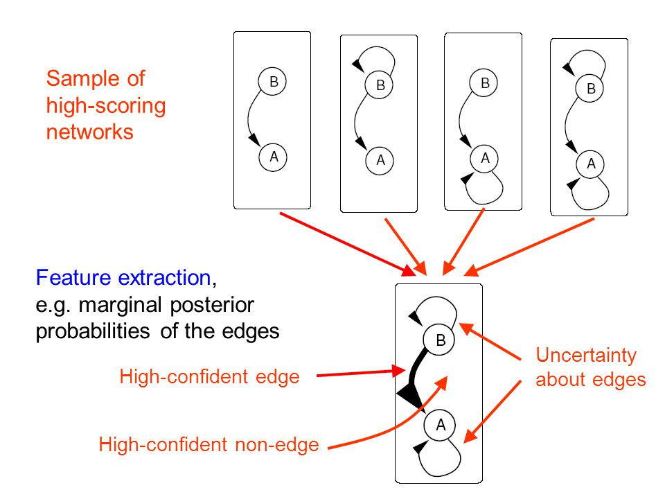 Feature extraction, e.g. marginal posterior probabilities of the edges High-confident edge High-confident non-edge Uncertainty about edges