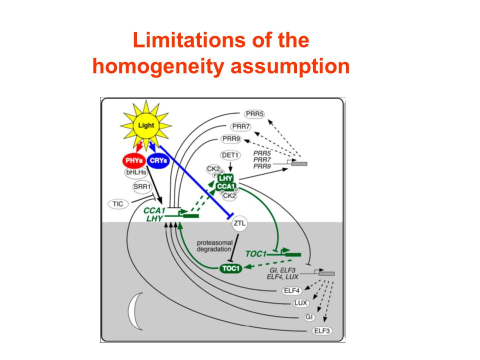 Limitations of the homogeneity assumption